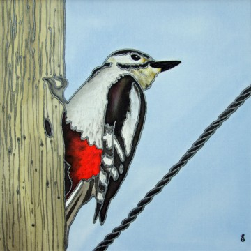 February-Woodpecker-For-Web