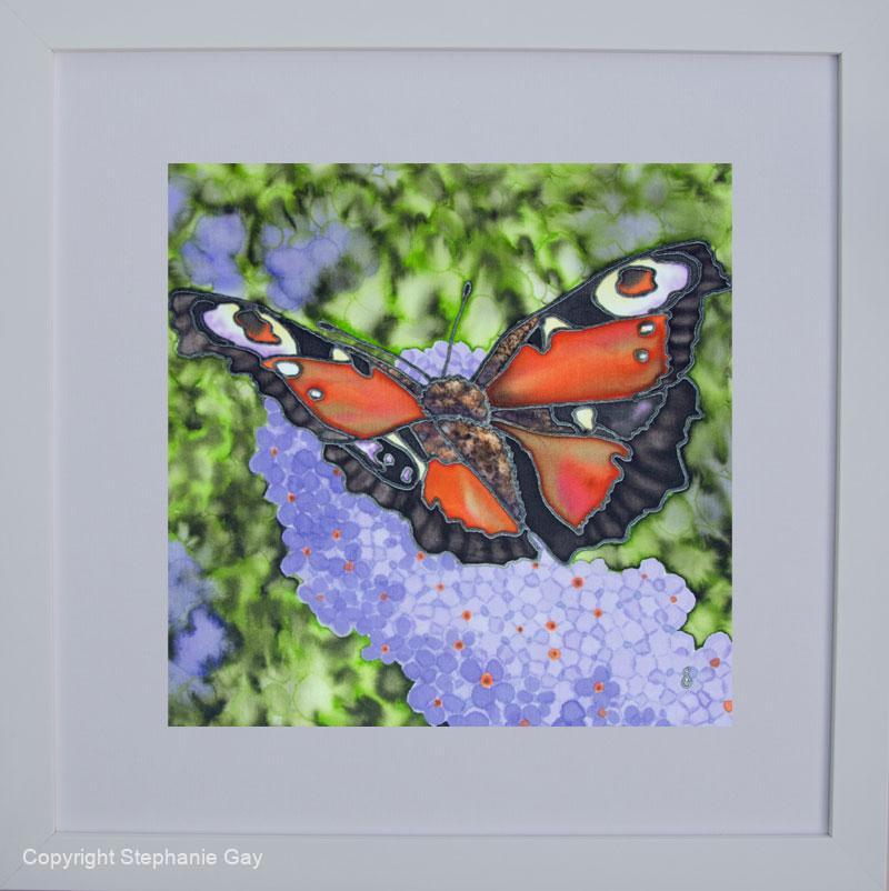 July's-Perfect-Peacock-Framed-For-Web